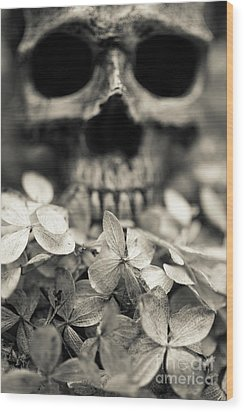 Wood Print featuring the photograph Human Skull Among Flowers by Edward Fielding