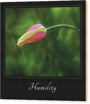 Wood Print featuring the photograph Humility 1 by Mary Jo Allen