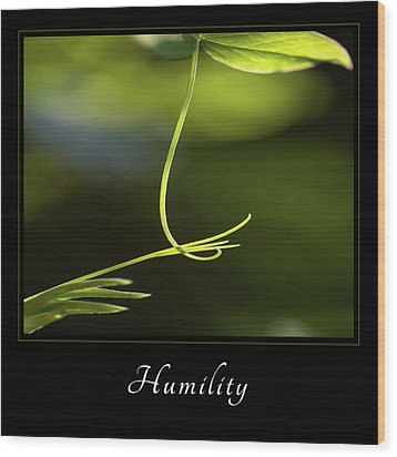 Wood Print featuring the photograph Humility 2 by Mary Jo Allen