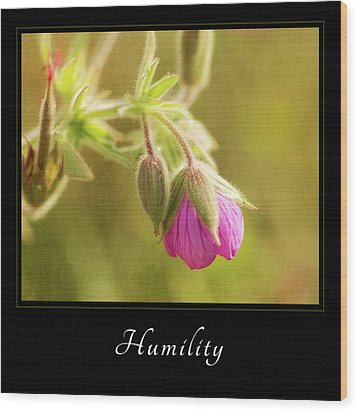 Humility 3 Wood Print by Mary Jo Allen