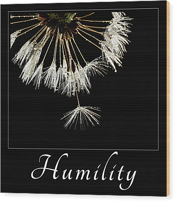 Wood Print featuring the photograph Humility by Mary Jo Allen