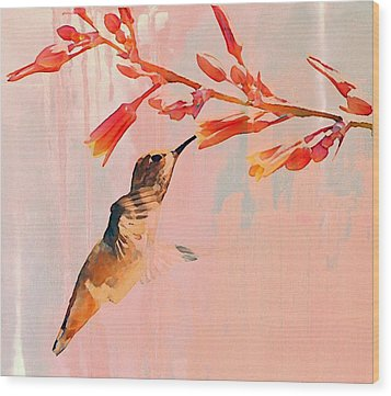 Hummer Art Wood Print by Fraida Gutovich