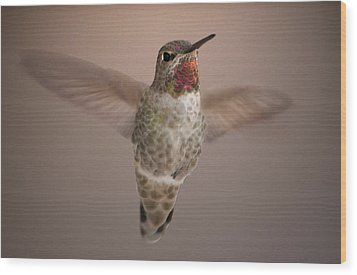Hummer Love Wood Print by Holly Ethan