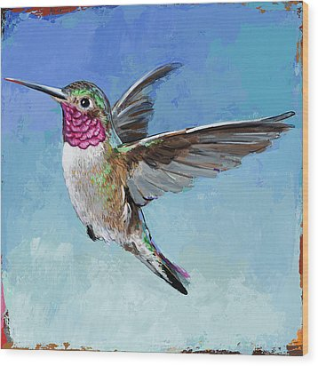 Hummingbird #6 Wood Print by David Palmer