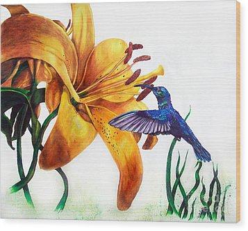 Hummingbird And Yellow Flower Wood Print