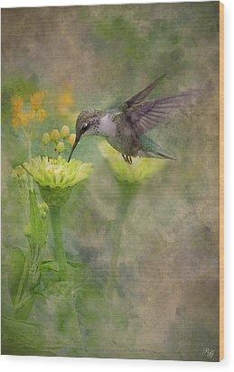 Hummingbird Art Wood Print