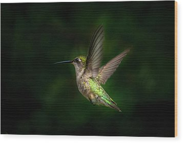 Hummingbird B Wood Print