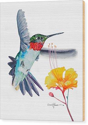 Da169 Hummingbird Flittering Daniel Adams Wood Print