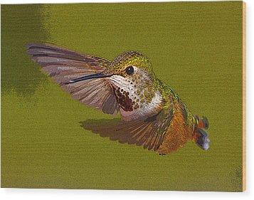 Hummingbird In Flight- Abstract Wood Print by Tim Grams