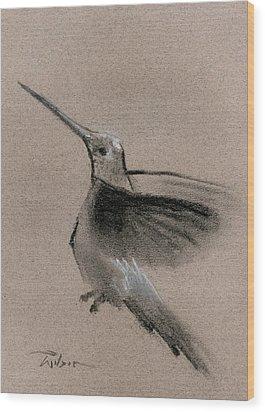 Fine Art Charcoal Rendering Of A Hummingbird In Flight. Wood Print by Ron Wilson