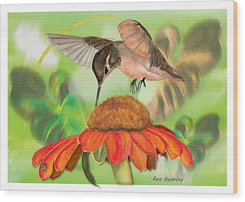 Wood Print featuring the painting Hummingbird On Flower by Anne Beverley-Stamps