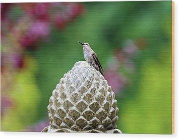 Hummingbird On Garden Water Fountain Wood Print by David Gn
