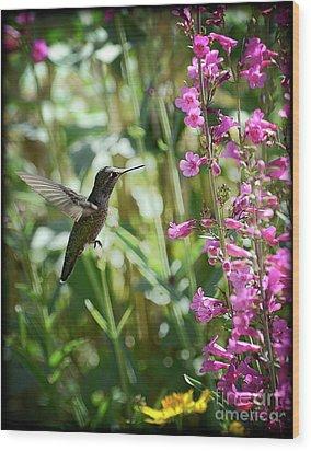 Hummingbird On Perry's Penstemon Wood Print