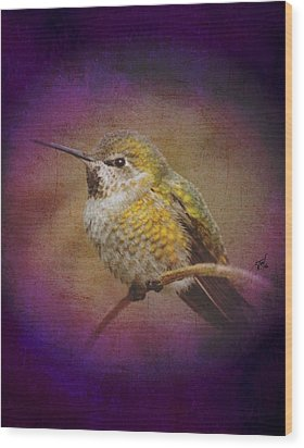 Wood Print featuring the digital art Hummingbird Rufous by John Wills