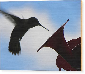 Wood Print featuring the photograph Hummingbird Silhouette by Sandi OReilly