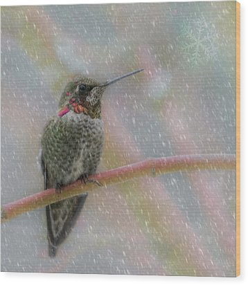 Wood Print featuring the photograph Hummingbird Snowfall by Angie Vogel