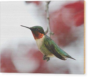 Wood Print featuring the photograph Hummingbird Watch Tower by Lara Ellis