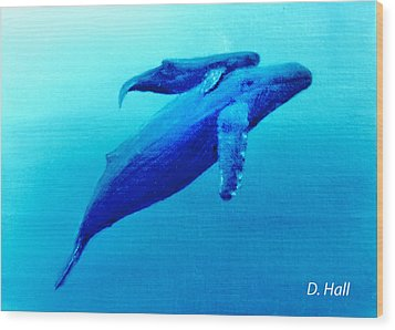 Humpback Mother Whale And Calf  #11 Wood Print by Donald k Hall
