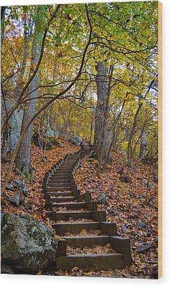 Humpback Rock Trail Wood Print