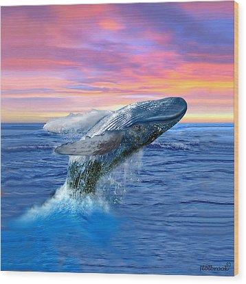 Humpback Whale Breaching At Sunset Wood Print by Glenn Holbrook