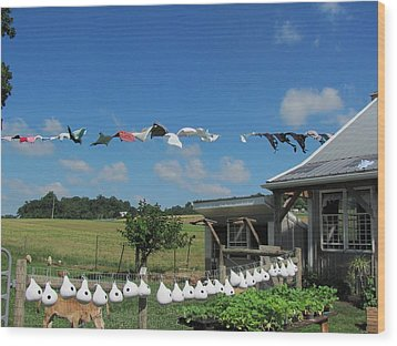 Hung Out To Dry Wood Print by Renee Holder