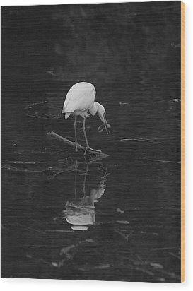 Wood Print featuring the photograph Hunting Egret by Joshua House