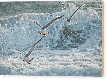 Hunting The Waves Wood Print by Don Durfee