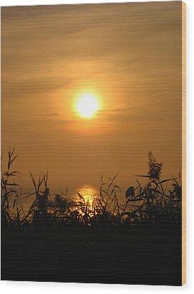 Huron Sunrise Wood Print