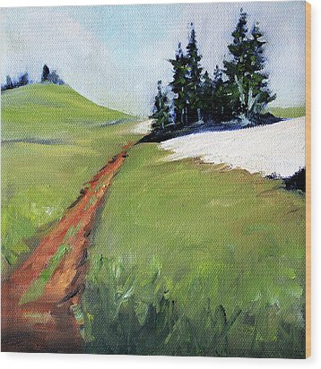 Wood Print featuring the painting Hurricane Hill by Nancy Merkle