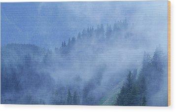 Hurricane Ridge Wood Print