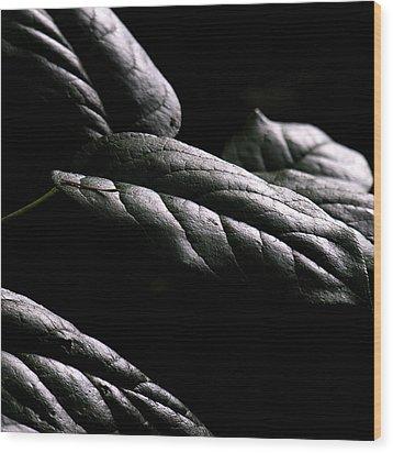 Hushed Wood Print by Bonnie Bruno