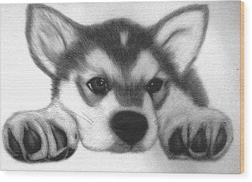 Huskie Pup Wood Print by Susan Barwell