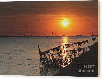 Husum Sunset Wood Print