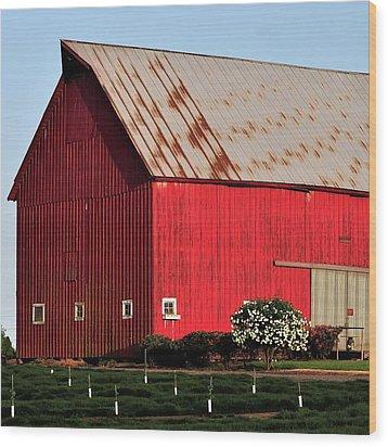 Hwy 47 Red Barn 21x21 Wood Print by Jerry Sodorff