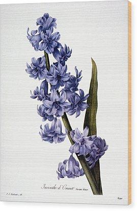 Hyacinth Wood Print by Granger