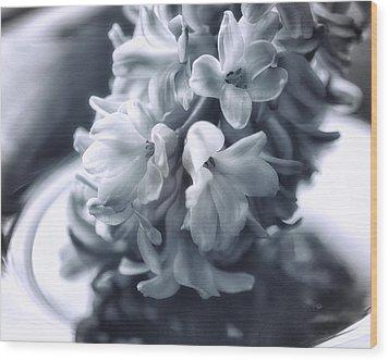 Hyacinth Plated Wood Print