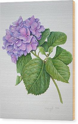 Wood Print featuring the painting Hydranga by Margit Sampogna