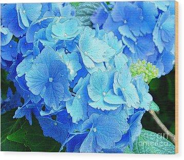 Hydrangea Wood Print by Addie Hocynec