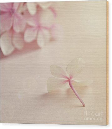 Wood Print featuring the photograph Hydrangea Flower by Lyn Randle