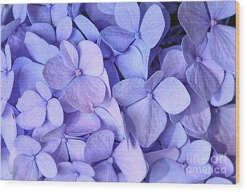 Wood Print featuring the photograph Hydrangea by Kerri Farley