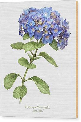 Hydrangea Nikko Blue Wood Print