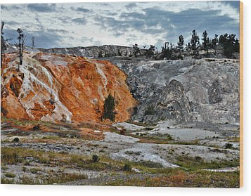 Hymen Terrace At Mammoth Hot Springs - Yellowstone National Park Wy Wood Print by Christine Till