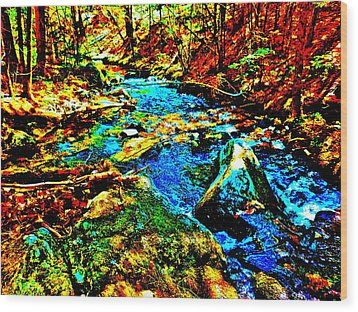 Hyper Childs Brook Z 5 Wood Print by George Ramos