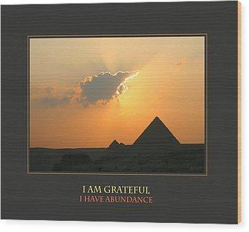 I Am Grateful I Have Abundance Wood Print by Donna Corless
