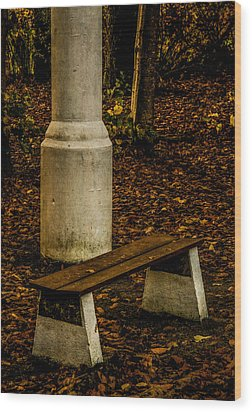 Wood Print featuring the photograph I Could Wait by Odd Jeppesen