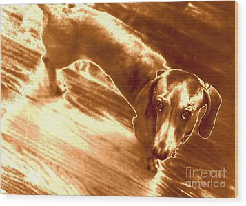 I Did Not Mean To Do It Wood Print by Elizabeth Hoskinson