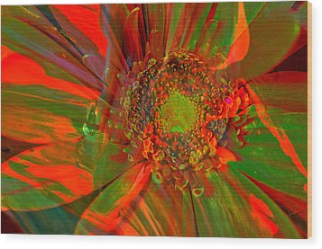 Wood Print featuring the photograph I Dreamed Of Flowers  by Jeff Swan