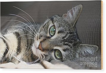 Wood Print featuring the photograph I Get Lost In Your Eyes by Heather King