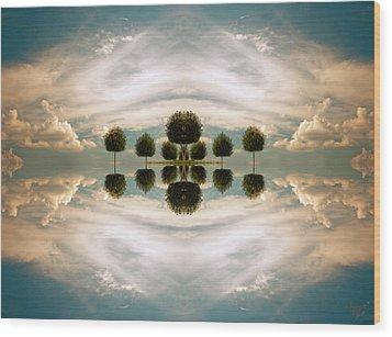 I Imagine The Paradise Wood Print by Renata Vogl