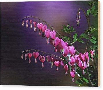 I Love Bleeding Hearts Wood Print by Judy  Johnson